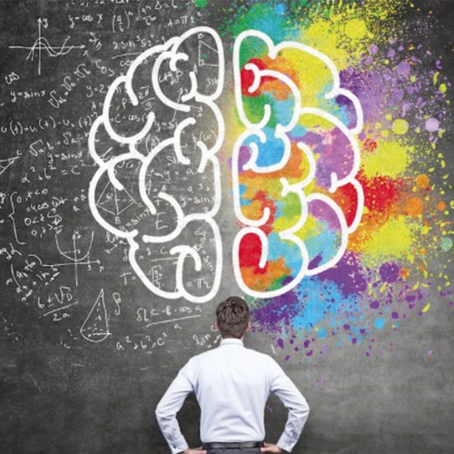 inteligence-emotionelle-cerveau-reflexion