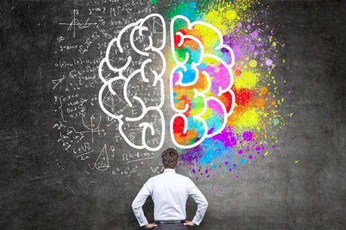 intelligence-emotionnelle-cerveau